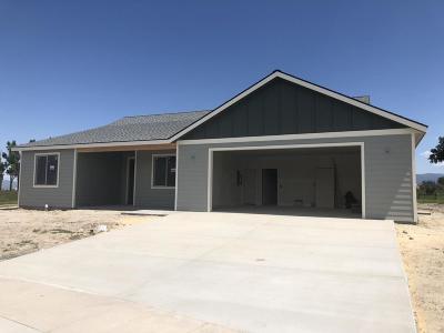 Stevensville Single Family Home For Sale: 278 Birch Lane