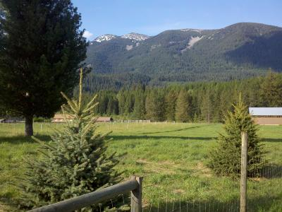 Sanders County Residential Lots & Land For Sale: Nhn Golden Pond Drive