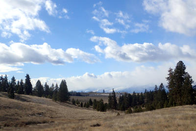 Ravalli County Residential Lots & Land For Sale: Lot 5 Fox Gulch Road
