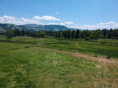 Ravalli County Single Family Home For Sale: 187 Lost Horse Road