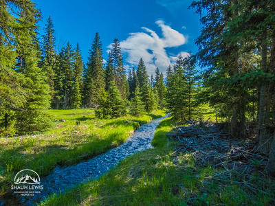 Missoula County Residential Lots & Land For Sale: 210 Grayling Drive