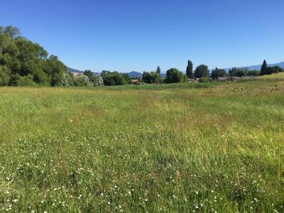 Polson MT Residential Lots & Land For Sale: $47,000