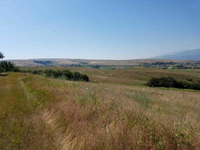 Missoula County Residential Lots & Land For Sale: Lot 2 Highway 93