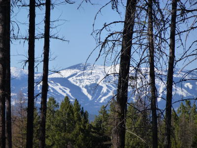 Kalispell Residential Lots & Land For Sale: Nhn Bald Rock Road
