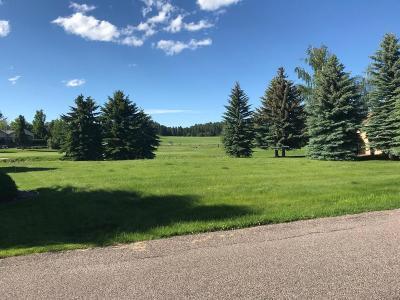 Bigfork Residential Lots & Land For Sale: 215 Bridger Drive