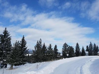 Lincoln County Residential Lots & Land For Sale: Lot 6b Mariners Loop