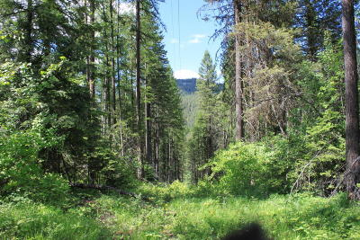 Whitefish Residential Lots & Land For Sale: 2597 Us Highway 93 West