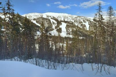 Whitefish Residential Lots & Land Under Contract Taking Back-Up : 158 Ridge Run Drive