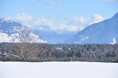 Whitefish Residential Lots & Land For Sale: 207 Vista Drive