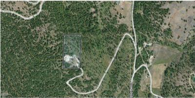 Flathead County Residential Lots & Land For Sale: 670 Triplett Road