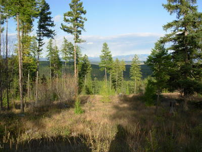 Kalispell Residential Lots & Land For Sale: Nhn Paradise Hills Drive