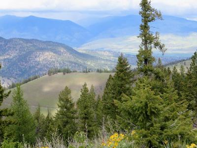 Missoula Residential Lots & Land For Sale: 30063sb247 Deep Creek