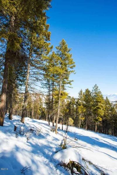 Kalispell Residential Lots & Land For Sale: 3382 Airport Road