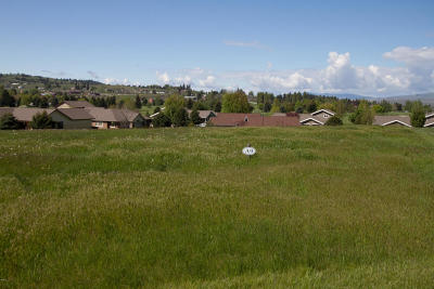 Lake County Residential Lots & Land For Sale: 270 Montana Landing