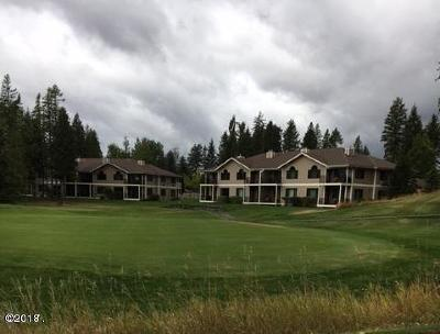Flathead County Other For Sale: 111 Spyglass Hill Loop