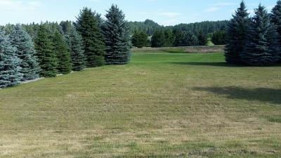 Flathead County Residential Lots & Land For Sale: 229 Bridger Drive