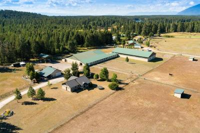 Flathead County Single Family Home For Sale: 116 Sandy Lane
