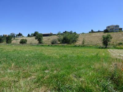Hamilton Residential Lots & Land For Sale: 274 Snow Goose Court