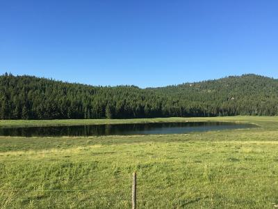 Flathead County Residential Lots & Land For Sale: Nkn Danielson Road