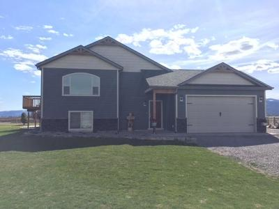 Flathead County Single Family Home For Sale: 315 Sky Ranch Lane