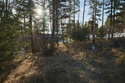 Lakeside Residential Lots & Land For Sale: 371 Skookum Road