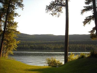 Bigfork Residential Lots & Land For Sale: 17089 Mt Hwy 83