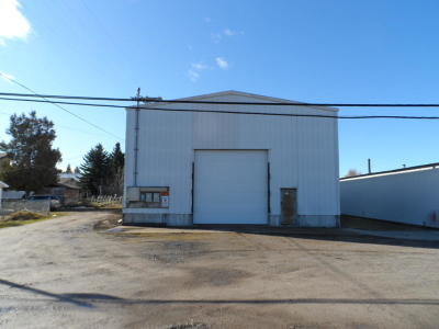 Lake County Commercial For Sale: 35729 Terrace Lake Road