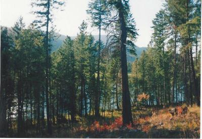 Lincoln County Residential Lots & Land For Sale: Kootenai River Road