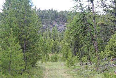Marion Residential Lots & Land For Sale: Nhn Us Hwy 2 West