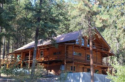 Plains Single Family Home For Sale: 51 High Country Road