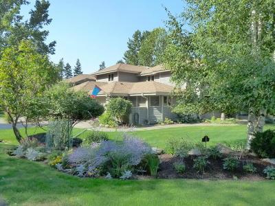 Flathead County Single Family Home For Sale: 253 Eagle Bend Drive