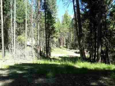 Missoula County Residential Lots & Land For Sale: 701 Evergreen Drive