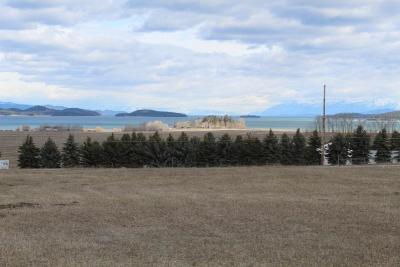 Lake County Residential Lots & Land For Sale: Lot 7 Acre View Drive