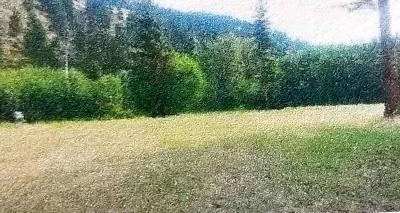 Lincoln County Residential Lots & Land For Sale: River Run Lane