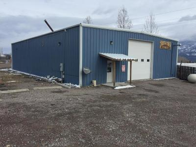 Lake County Commercial For Sale: 36673 Fair Meadow Lane