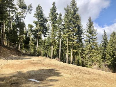 Ravalli County Residential Lots & Land For Sale: 1775 Castle View Drive
