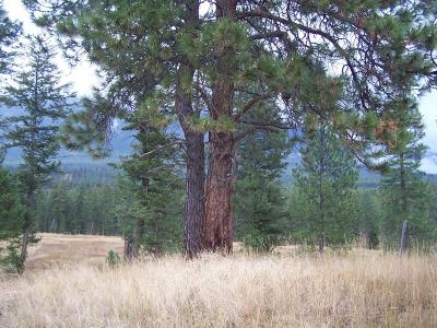 Lincoln County Residential Lots & Land For Sale: Nhn Wild West Drive
