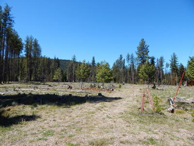 Seeley Lake MT Residential Lots & Land For Sale: $119,950