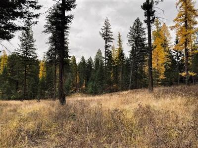 Flathead County Residential Lots & Land For Sale: 1414 Bigfork Stage Road