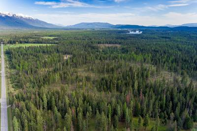 Flathead County Residential Lots & Land For Sale: 3930 Foothill Road