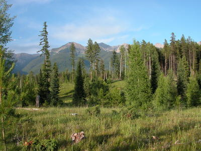 Missoula County Residential Lots & Land For Sale: 528 Panorama Trail