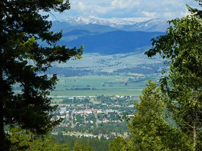 Ravalli County Residential Lots & Land For Sale: 479 Wyant Lane