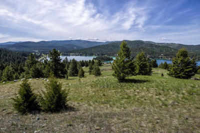 Kalispell Residential Lots & Land For Sale: 2020 Strand Drive