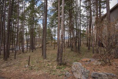 Bigfork Residential Lots & Land For Sale: 283 Eagle Bend Drive