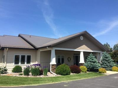 Stevensville Single Family Home For Sale: 460 Windwalker Trail
