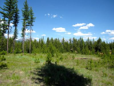 Flathead County Residential Lots & Land For Sale: N.H.N. Kintla Ranch Road