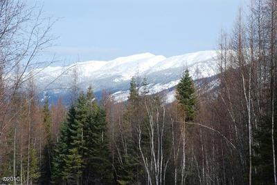 Bigfork Residential Lots & Land Under Contract Taking Back-Up : Lot 11 Wapiti Pines
