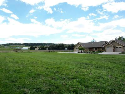 Lake County Residential Lots & Land For Sale: 104 Yellowstone Court