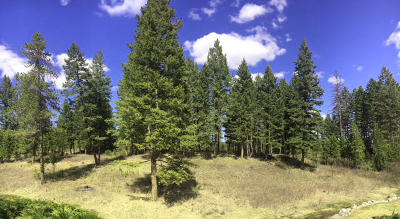 Whitefish MT Residential Lots & Land For Sale: $144,500