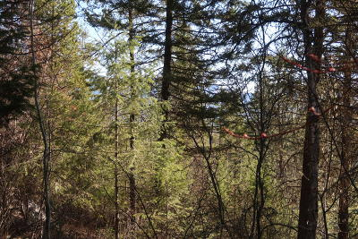 Whitefish Residential Lots & Land For Sale: 7 Glacier View Court